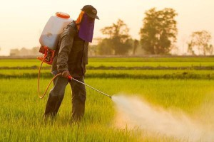 Pesticides being sprayed over agricultural land