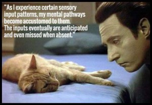 Star Trek The Next Generation quote by Data